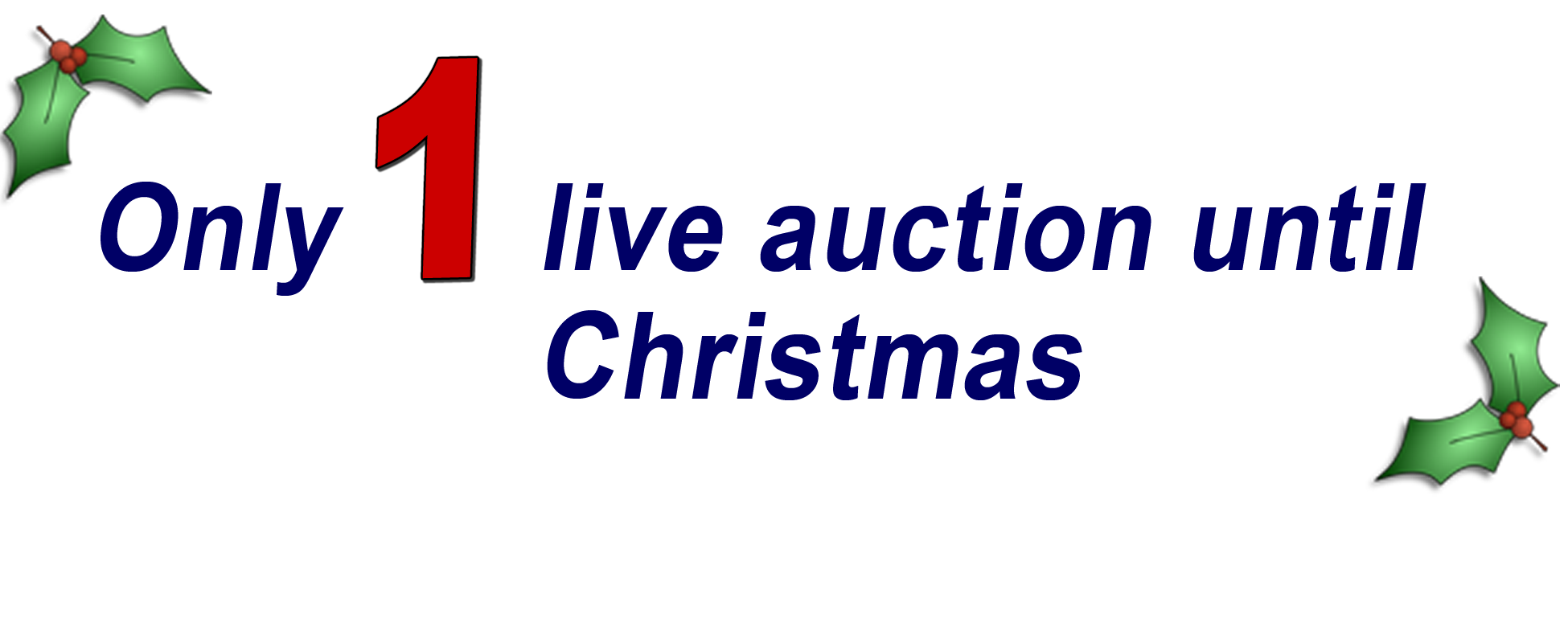 Only 2 auctions until Christmas